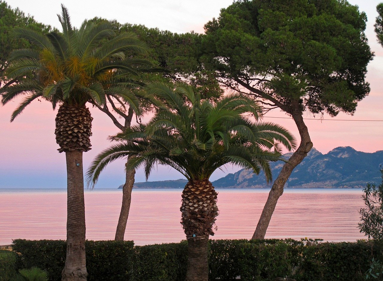 Mallorca im Winter. Meerblick in Palma