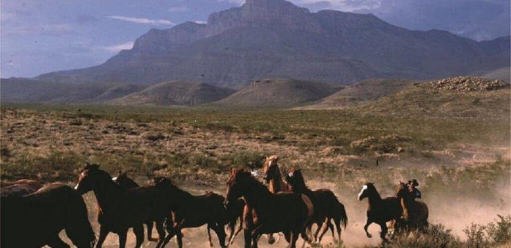 ranch-texas-j-griffis-smith_sehr_klein
