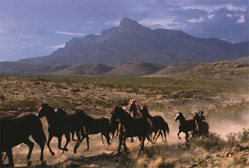 luxuri se ranch texas ranch urlaub in amerika. Black Bedroom Furniture Sets. Home Design Ideas