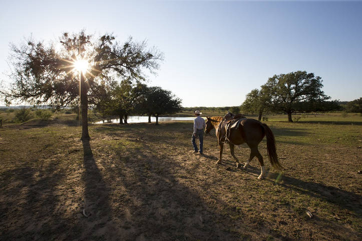 Ranch in Texas