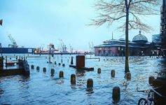 Hamburg bei Regen, Fischauktionshalle überschwemmt