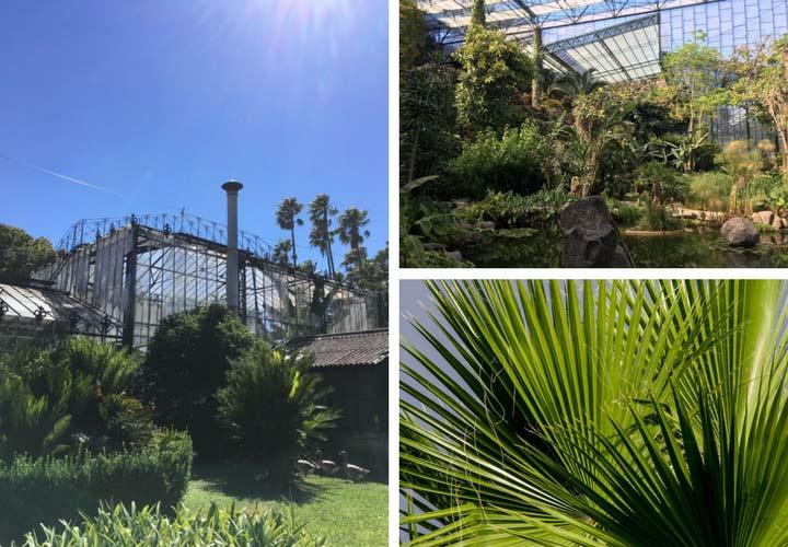 Lissabon Sehenswürdigkeit Botanischer Garten