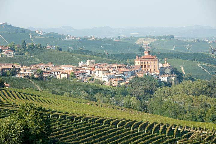 Radweg nach Barolo im Piemont