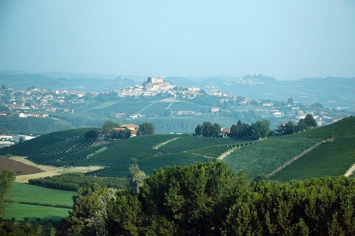 Wein und Genuss im Piemont
