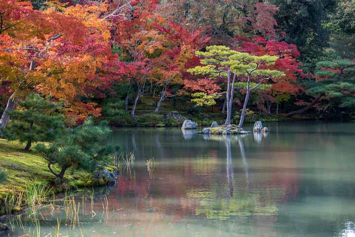 Kinkadu-ji Tempel Kyoto Garten